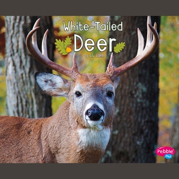 White-Tailed Deer audiobook by G.G. Lake