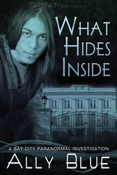 What Hides Inside ebook by Ally Blue