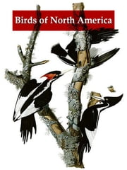 A Synopsis of the Birds of North America ebook by John James Audubon