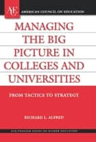Managing the Big Picture in Colleges and Universities ebook by Richard L. Alfred