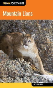 Mountain Lions ebook by Jack Ballard