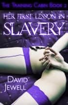 Her First Lesson in Slavery ebook by David Jewell