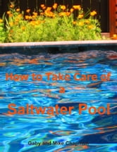 How to Take Care of a Saltwater Pool ebook by Gaby Chapman
