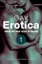 Gay Erotica, Volume 1 ebook by James Hunt