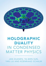 Holographic Duality in Condensed Matter Physics