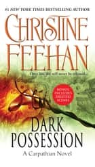 Dark Possession ebook by Christine Feehan