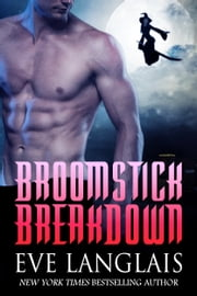Broomstick Breakdown ebook by Eve Langlais