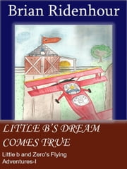 Little b's Dream Comes True - Little b and Zero's Flying Adventures, #1 ebook by Brian Ridenhour