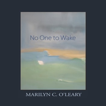 No One to Wake audiobook by Marilyn C. O'Leary