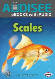 Scales ebook by Jennifer Boothroyd, Intuitive