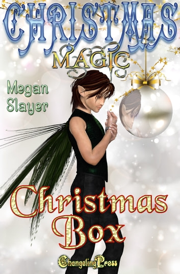 Christmas Box ebook by Megan Slayer