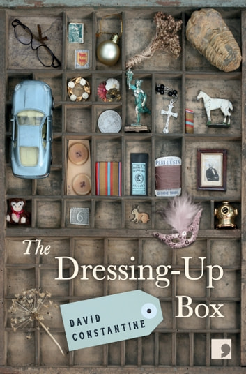The Dressing-Up Box ebook by David Constantine