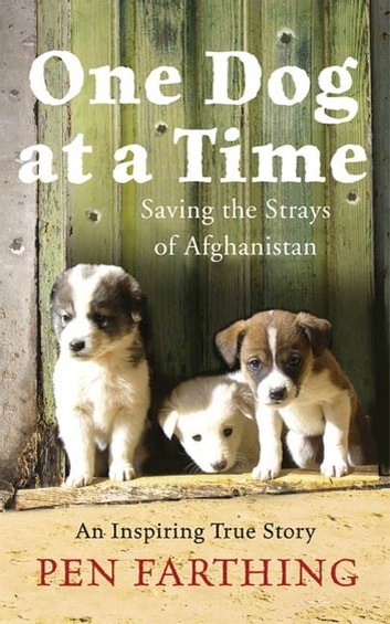 One Dog at a Time - Saving the Strays of Afghanistan ebook by Pen Farthing