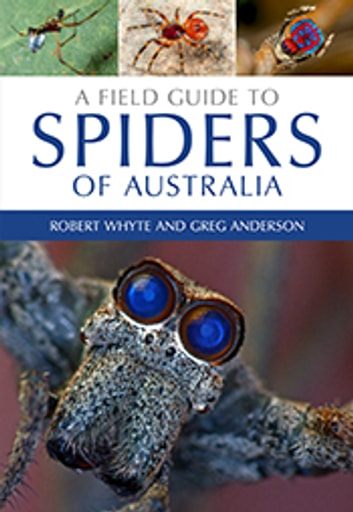 A Field Guide to Spiders of Australia ebook by Robert  Whyte,Greg  Anderson