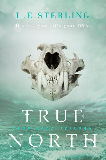 True North ebook by L.E. Sterling