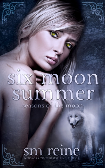 Six Moon Summer ebook by SM Reine