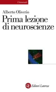 Prima lezione di neuroscienze ebook by Alberto Oliverio