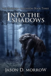 Into The Shadows ebook by Jason D. Morrow