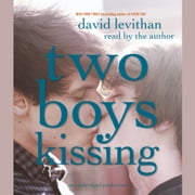 Two Boys Kissing audiobook by David Levithan