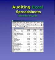 Auditing Excel Spreadsheets ebook by Payette, Raymond, J
