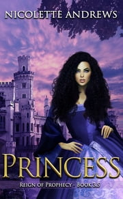 Princess ebook by Nicolette Andrews