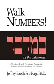 Walk Numbers - In the wilderness ebook by Jeffrey Enoch Feinberg, Ph.D.