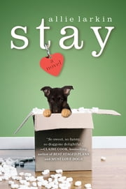 Stay - A Novel ebook by Allie Larkin