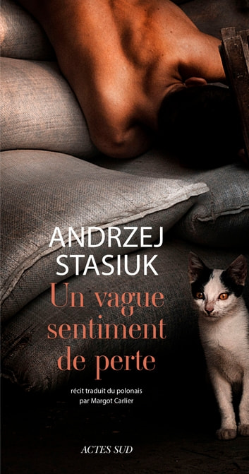 Un vague sentiment de perte ebook by Andrzej Stasiuk