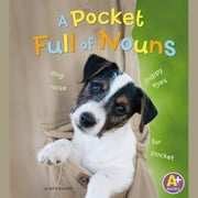 Pocket Full of Nouns, A Audiolibro by Bette Blaisdell