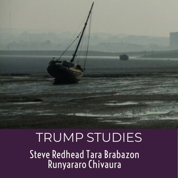 Trump Studies: An intellectual guide to why citizens vote against their own interests audiobook by Tara Brabazon,Steve Redhead,Runyararo S. Chivaura