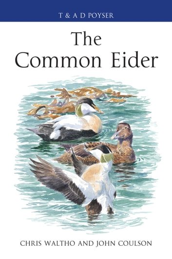 The Common Eider ebook by Chris Waltho,John Coulson