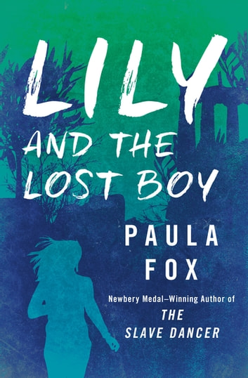 Lily and the Lost Boy ebook by Paula Fox