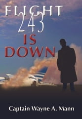 Flight 243 Is Down ebook by wayne mann