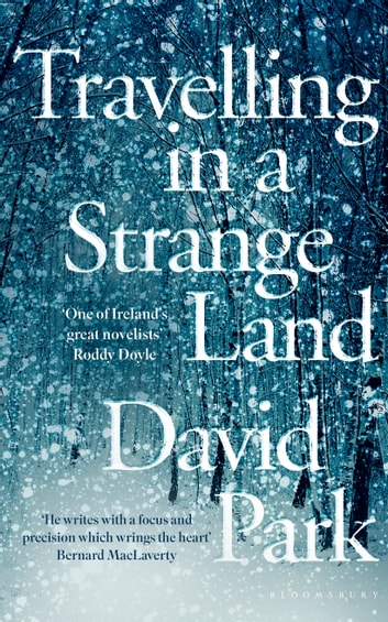 Travelling in a Strange Land - Winner of the Kerry Group Irish Novel of the Year ebook by David Park
