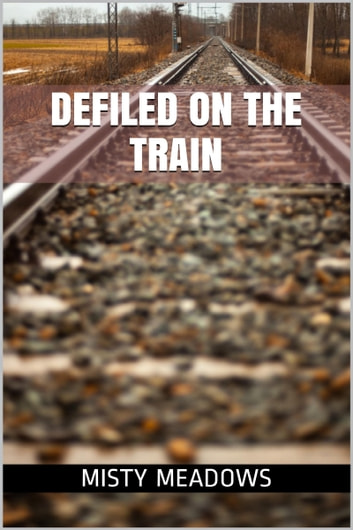 Defiled On The Train (Virgin, First Time) ebook by Misty Meadows