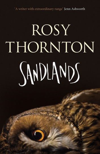Sandlands ebook by Rosy Thornton