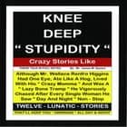 Knee Deep Stupidity audiobook by James M. Spears