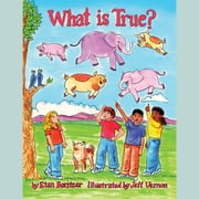 What is True? audiobook by Etan Boritzer