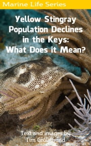 Yellow Stingray Population Declines in the Keys: What Does it Mean? ebook by Tim Grollimund