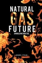 Natural Gas Future - A World Without Oil ebook by Richard L. Itteilag