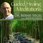 Guided Healing Meditations audiobook by Bernie Siegel