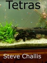 Tetras ebook by Steve Challis