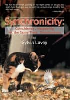 Synchronicity - Coincidence, Happening at the Same Time, Simultaneous ebook by Sylvia Lavey
