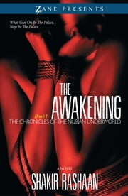 The Awakening - Book One of the Chronicles of the Nubian Underworld ebook by Shakir Rashaan