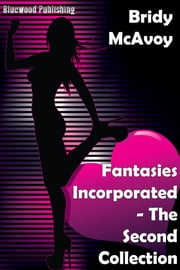 Fantasies Incorporated: The Second Collection ebook by Bridy McAvoy