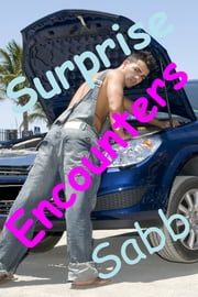 Surprise Encounters - A Gay Erotica Anthology ebook by Sabb