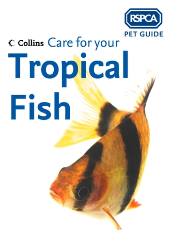 Care for your Tropical Fish (RSPCA Pet Guide) ebook by RSPCA