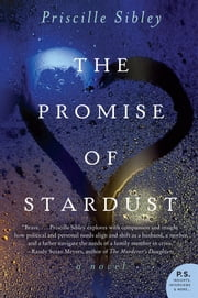 The Promise of Stardust - A Novel ebook by Priscille Sibley