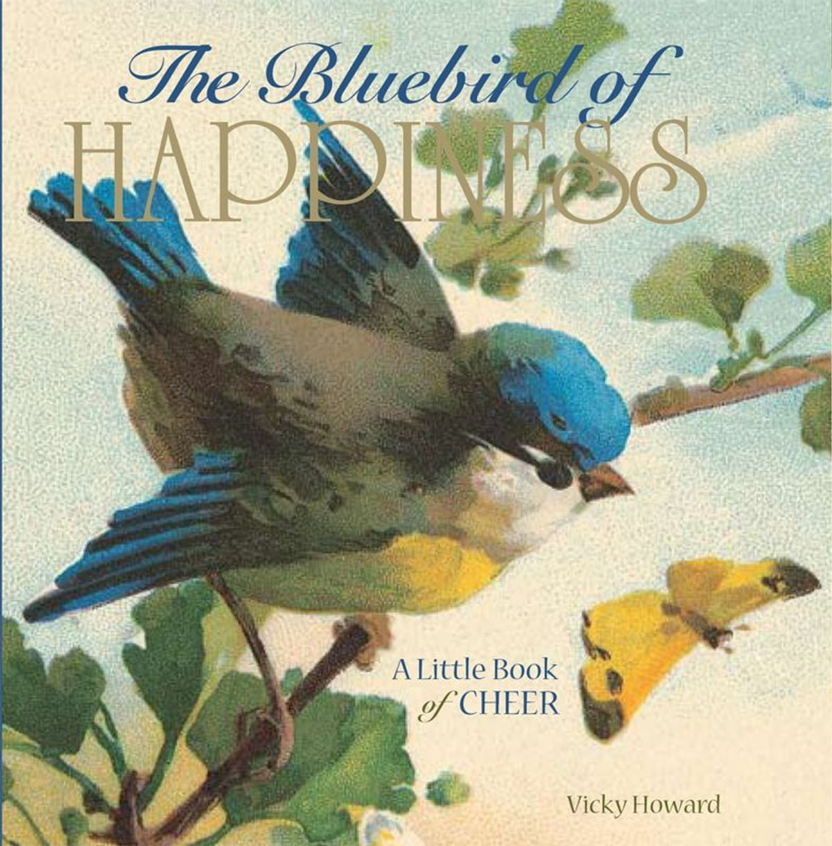 The bluebird of happiness a little book of cheer ebook by vicky the bluebird of happiness a little book of cheer ebook by vicky howard 9780740787454 rakuten kobo fandeluxe PDF