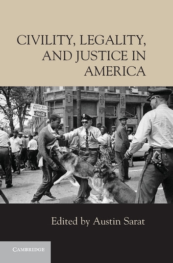 """justice in america essay Law enforcement – essay sample (""""modern"""" policing in america  check the category for all criminal justice essay samples or review the database of free."""